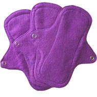 Eco Femme Pads and Liners