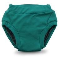 NEW! Rumparooz Ecoposh Training Pants
