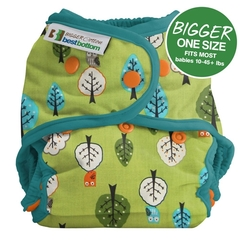 NEW! Best Bottoms Bigger Shell Cotton: Family Tree