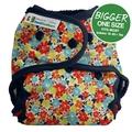 Best Bottoms Bigger Shell Cotton: Fancy Pants