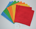 Jumbo Reusable Wipes 10pk: Brights Mix