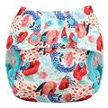 NEW! Blueberry Onesize Capri Nappy Wrap: Poppy Fields