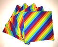 Jumbo Reusable Wipes 5pk: Rainbow Stripe