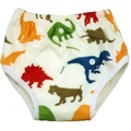 Alva Training Pants: Regular: Dinosaurs