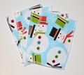 5-Pack Medium Washable Wipes: Frosty
